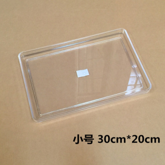 Acrylic rectangular side dish
