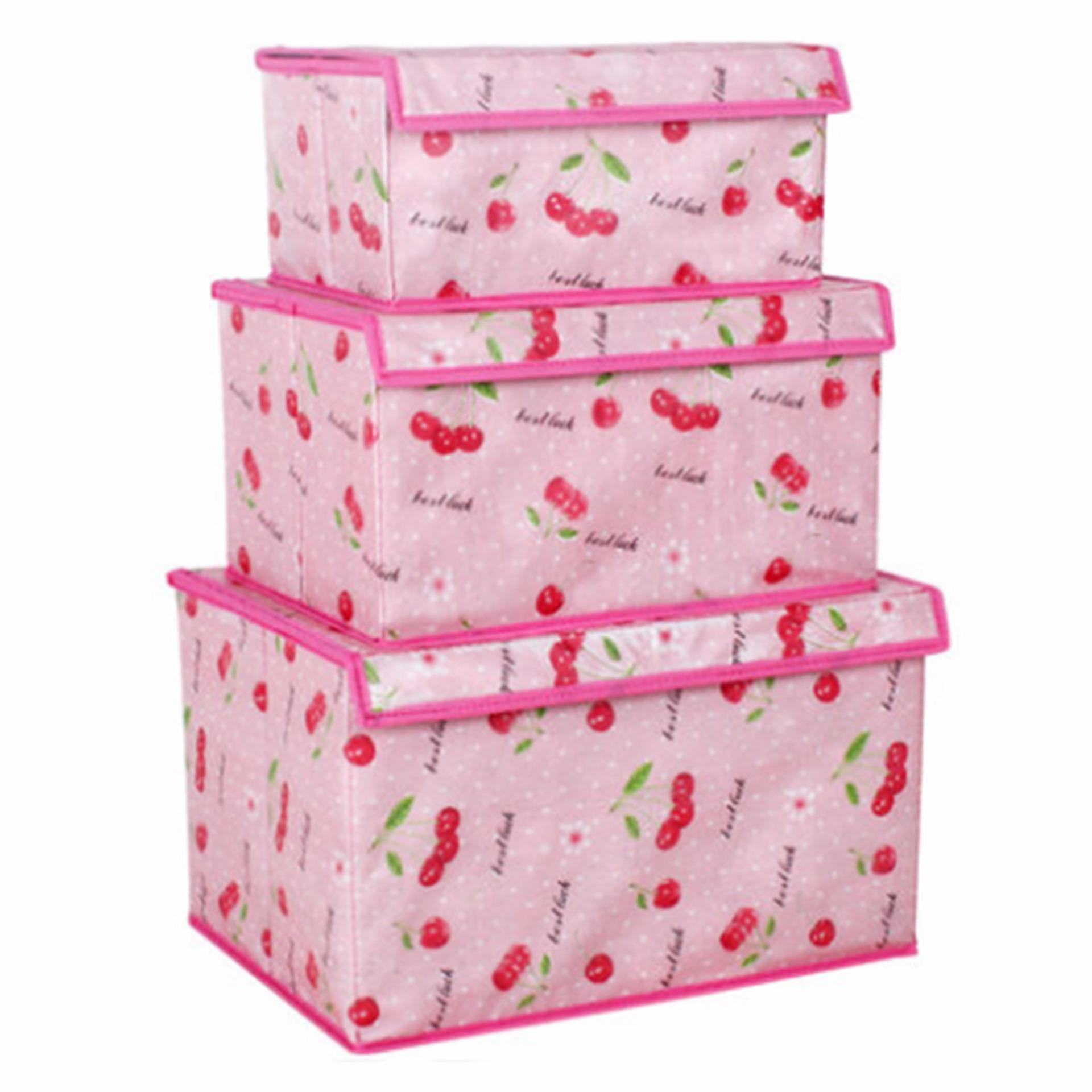 Adventurer Storage Box 3 pieces Set (PinkCherry)