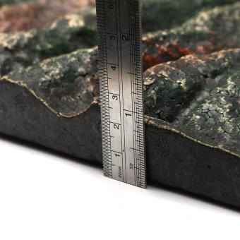 Aquarium Reptile Vivarium 3D Natural Look Realistic Polystyren?eBackground - intl - 4