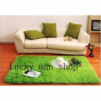 As Seen On TV Malaysia 80 x 120 cm silk hair living room coffeetable bedroom carpet and Yoga Mat Light green