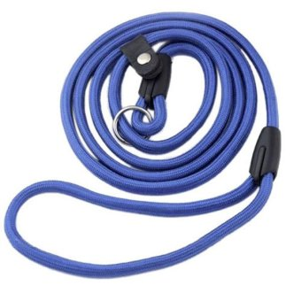 Blue lans Nylon Rope Training Leash (Blue) Price Philippines