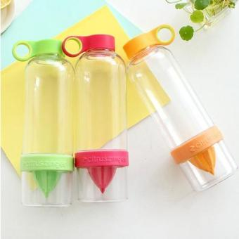 Citrus Zinger Water Tumbler Healthy Fruit Juice Fusion InfusingHydrating Water Bottle of 3 - 2