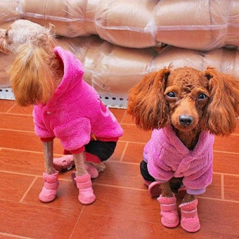 Cute Chihuahua Dog Shoes Puppy Warm Boots Shoes color:Pink size:S -intl - 4