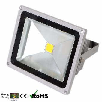 EcoGreen 50 Watt Outdoor LED Floodlight Daylight (Grey)