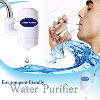 Environment-friendly Water Purifier