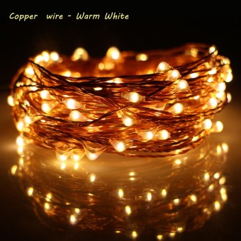 ERCHEN 10M 100led Copper Wire LED String Light With 12V1A UK PlugAdapter For Decoration Garden Fairy Lights (Warm White) Price Philippines