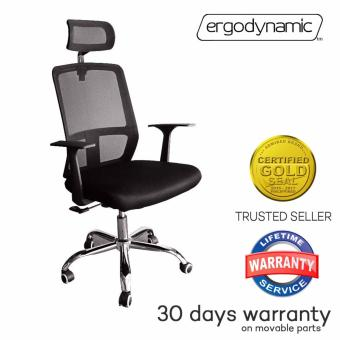 Ergodynamic EHC-P15 High Back Tilting Mesh Office Chair with Pneumatic Height Adjustment and Headrest (Black)