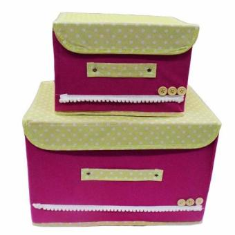 Fashion 2pcs Storage Organizer
