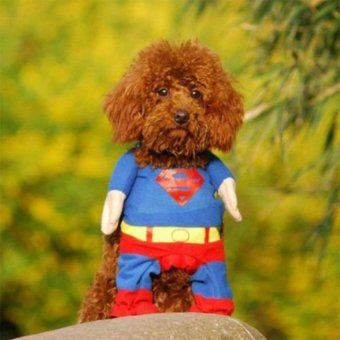 Funny Fashion Pet Dog Costumes Apparel T Shirt Superman SuitwithCloak - intl