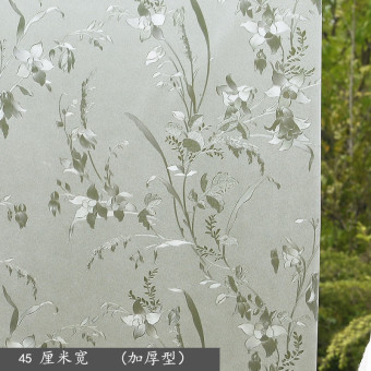 Garden light is not transparent frosted glass stickers Protector
