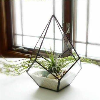 Glass Geometric Greenhouse for Succulent Plants