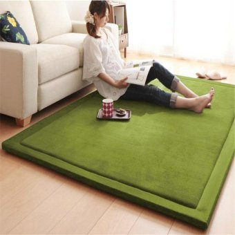 High Quality Store New Floor Carpets Comfort and Smooth JapaneseStyles 80*200cm (green) - intl