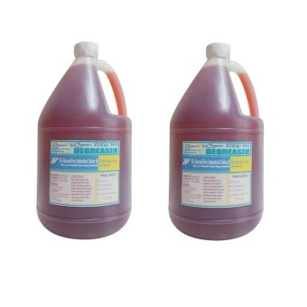 iChem Deg-Ws, Water Soluble Degreaser Reddish (Gallon) Set of 2