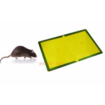 Harga SHOP AND THRIFT A42226-#LURE TRAOS MOUSE LARGE Tomcat Mouse & Rat Glue Traps Sticky Mouse Pad