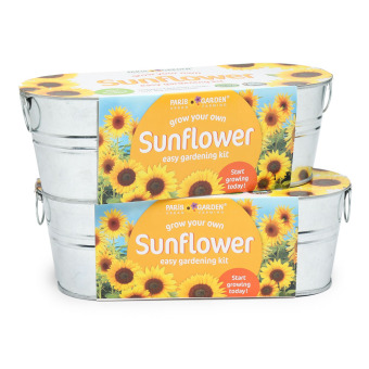 Harga Paris Garden Sunflower Easy Gardening Kit (Set of 2)