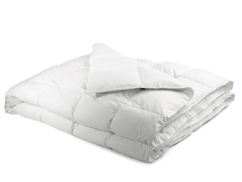 Comforter (Queen Size) Price Philippines