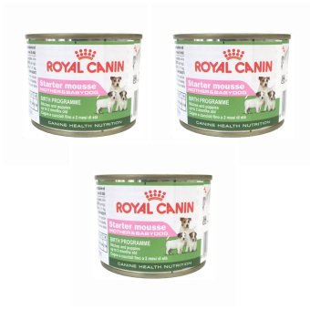 Harga Royal Canin Starter Mousse (195 grams) Set of 3