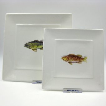 Multiple Choice 2-pieces Serving Square Plate Set - Fish Mongrel Price Philippines