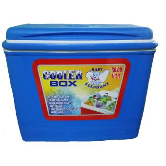 Ice Cooler Box 30 liters -blue Price Philippines
