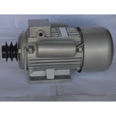 Induction Motor 1.5 Hp with FREE Hoyoma Japan C Clamp 2 Philippines