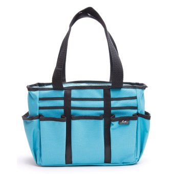 Le Organize Carry All Organizer (Aqua)