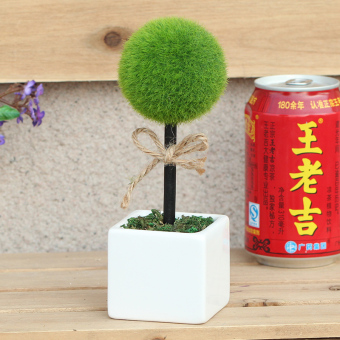 LOVE model plant potted small ornaments shop mini Bonsai