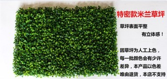 Model artificial lawn Green Wall