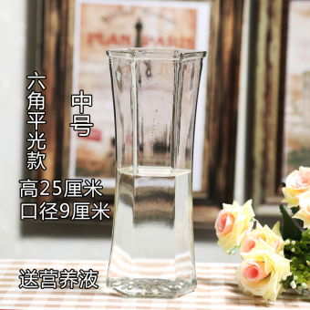 Modern Jianyue Lily lucky bamboo hydroponic flower holder vase