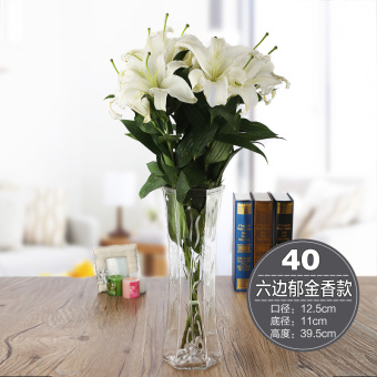 Modern minimalist Lily lucky bamboo hydroponic flower holder vase