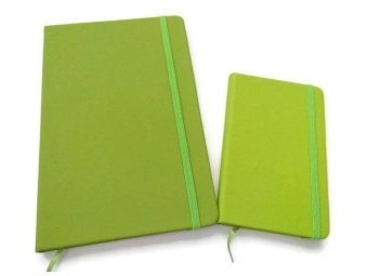 Moleskine Big and Small Notebook with Elastic Strap (Apple Green)