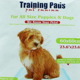 Nunbell Training Pads 60x60cm for Puppies and Dogs - 2