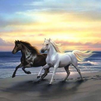 OEM White and Black Horse Landscape 5d diy Diamond PiantingEmbroidery Mosaic Needlework Cross Stitch Home Decor Wall Art