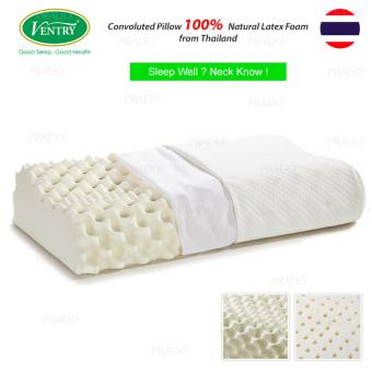 Original Ventry Natural Latex Foam Memory Massage Pillow (Thailand) Price Philippines