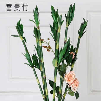 Pastoral country living room decorative flower model lucky bamboo