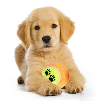 Pet Play Toy Chew - picture 2