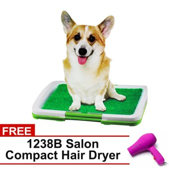 Pet Potty Trainer Indoor Grass (Green) with FREE 1238B SalonCompact Hair Dryer