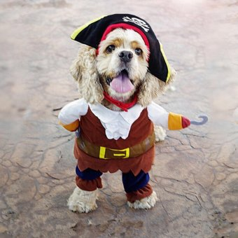 Pet Small Dog Cat Pirate Costume Outfit Jumpsuit Clothes forHalloween Christmas 24cm - intl