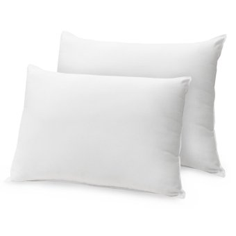 Queen Double Plush Pillow, (White) Price Philippines