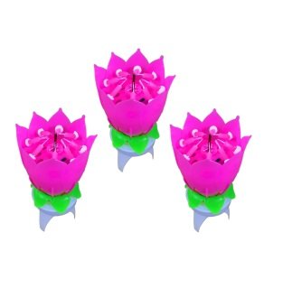 Rotating Birthday Music Candle Set of 3