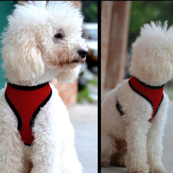 Soft Mesh Dog Harness Pet Puppy Cat Clothing Vest Red S - 4