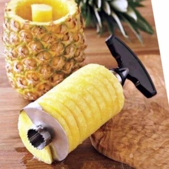 Stainless Steel Easy Kitchen Tool Fruit Pineapple Corer SlicerCutter Peeler
