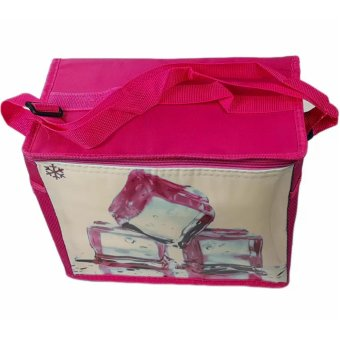 Taobao 8L New Cooler Ice Boxes Insulated Lunch Bag CollapsiblePicnic Cooler (Red)