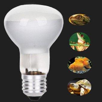 UVA UVB Basking Bulb Reptile Halogen Spotlights Warm Basking FullSpectrum UVA UVB Bulb 220V E27 - intl - 2