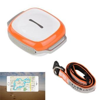 Waterproof Mini GPS Tracker with Collar Real Time Locator for DogsCats - intl