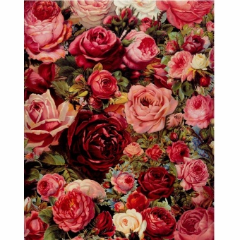 With Frame Picture Romantic Red Rose DIY Painting By Numbers Kits Acrylic Paint By Numbers Modern Wall Art Picture For Home Decor - intl