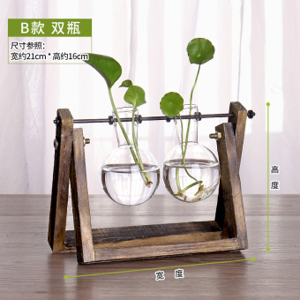 Wooden hydroponic green radish plants container glass flower holder