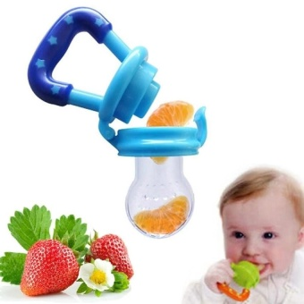 2 Pcs (L:6 Months and Up) Baby Fruits Feeding Food PacifierSilicone Kids Juice Feeding Teethers Nipple - intl