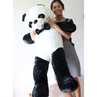 4.5ft Panda Bear Stuffed Toy (MALL QUALITY) Price Philippines