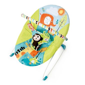 Bright Starts Pattern Friends Bouncer