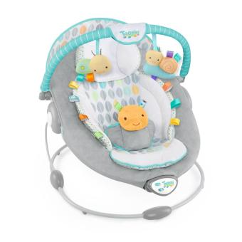 Bright Starts Taggies Soft N' Soothe Bouncer
